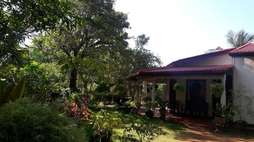 Charming and full of green - anuradhapura  - House