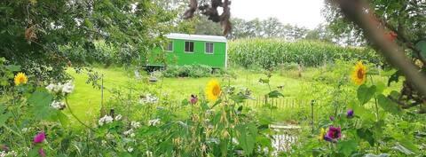 Let it Beee,  logeren in het groen nabij Ootmarsum