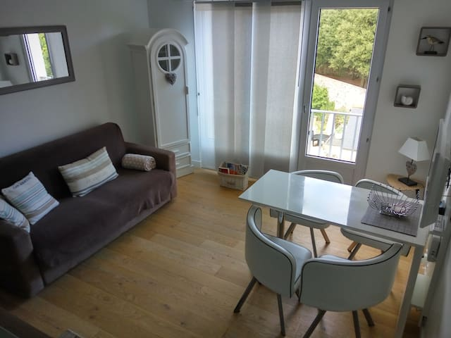 Studio 2/4 people 150 m beach with private parking