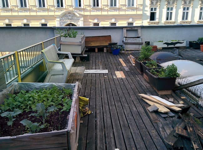 Students Flat with 100m2 terrace and SAUNA