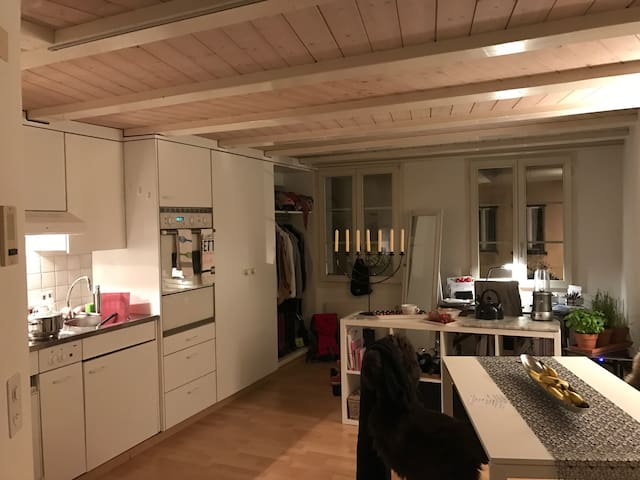 Cozy 2Room Apartment in OldTown Zug - Zug - Appartement