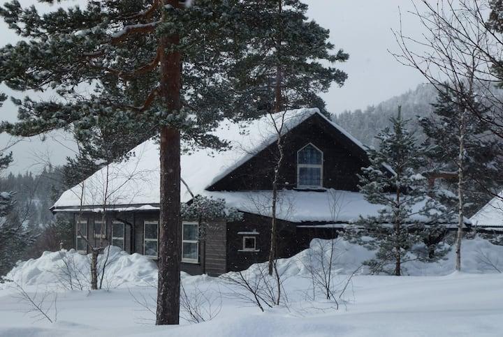Familiäres Ferienhaus in der Telemark