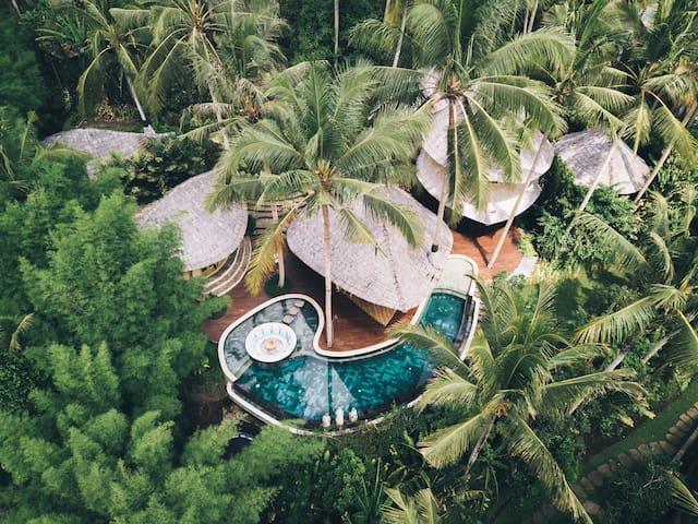Harmony House -3bds Eco Bamboo House, Pool, Garden