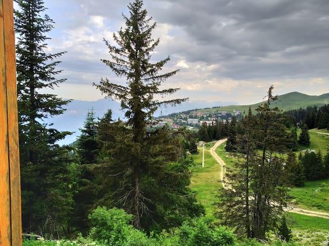 Studio cabine au pied des sentiers de randonnée