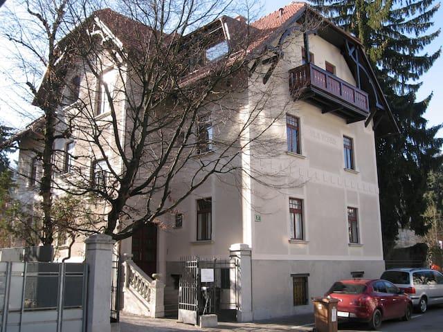Picturesque basement apartment in Villa Vesna