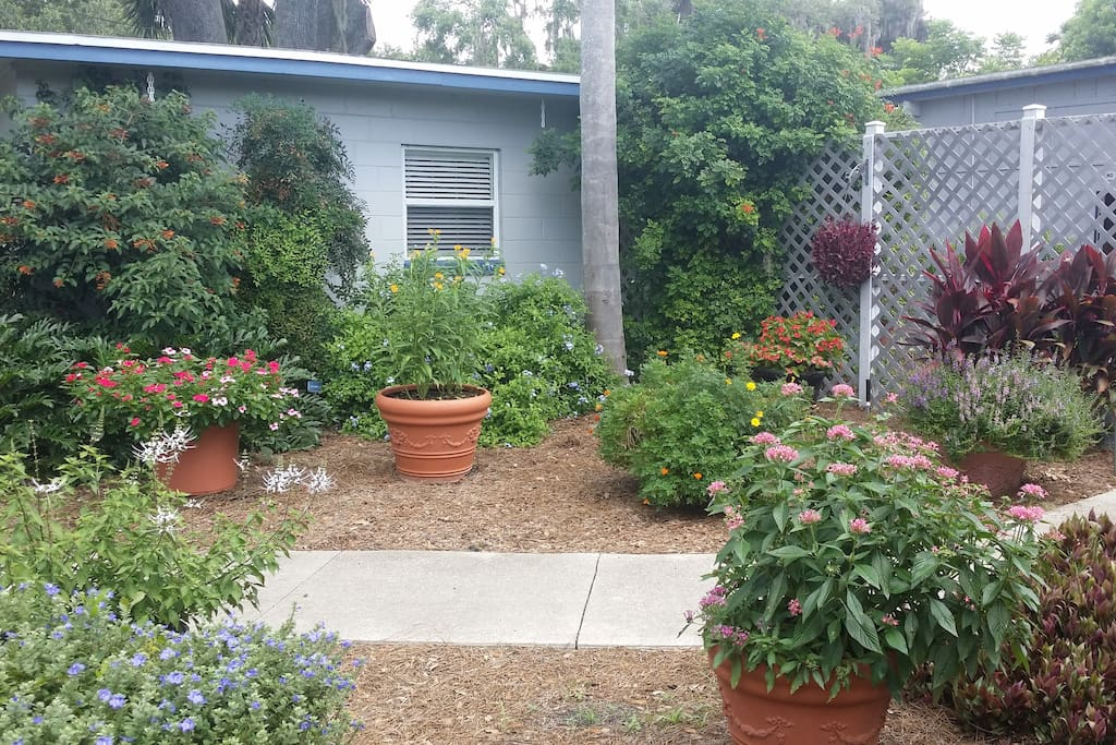 Hummingbird Garden-Adjacent to the Cottage
