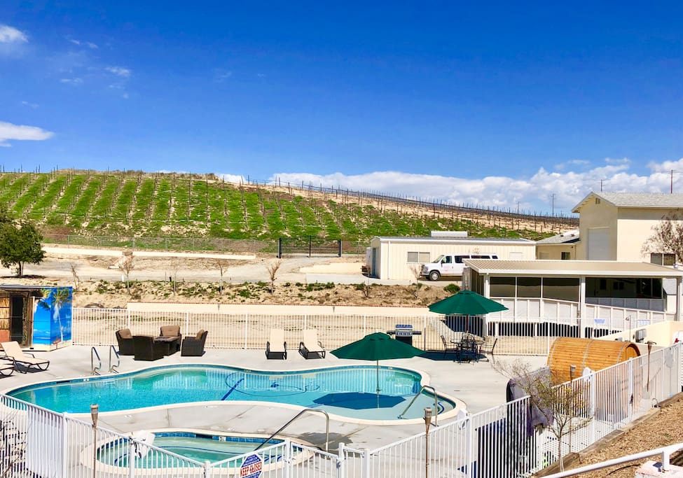 Pool Area and vines for Carter Estate Winery