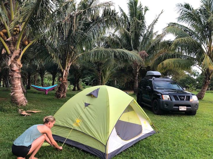 Epic Maui Camping 2