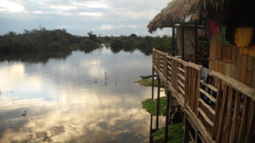 Ojos de Boa Logde St.Tomas2 Iquitos - Iquitos