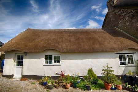 Comfortable annex in the heart of Dartmoor, TQ13