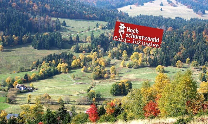 Black-Forest-Fewo B1, Pool +100 attractions free