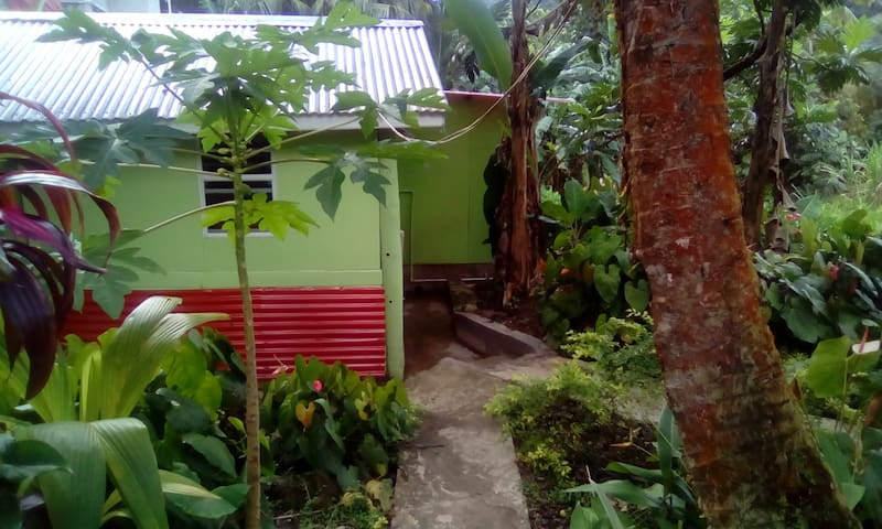 BREADFRUIT TREE ROOM