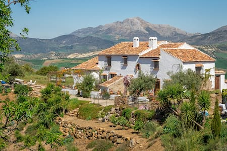 Historical house.   20 km to Malaga.