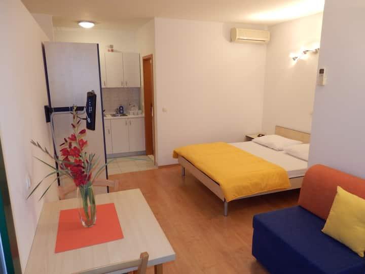 Apartments Rica 1B