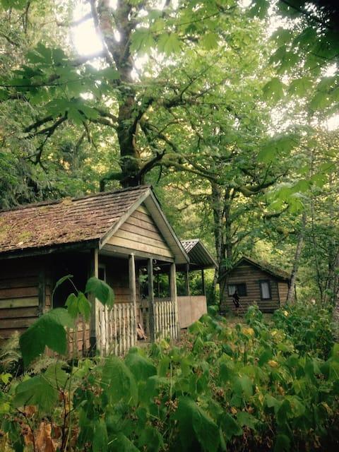 #1 Eco Retreat Cabin! Fish/Bring Horses/ATV/Kayak!