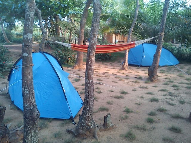 Camping site close to the beach