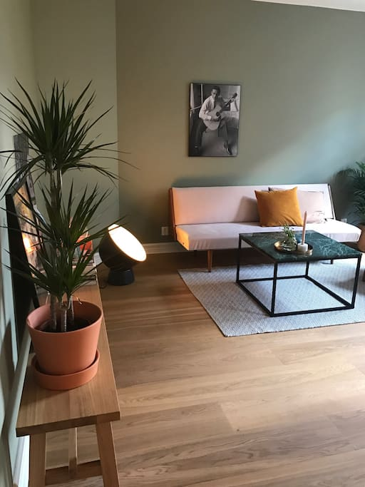 Sleeping couch in the living room for 1-2 people