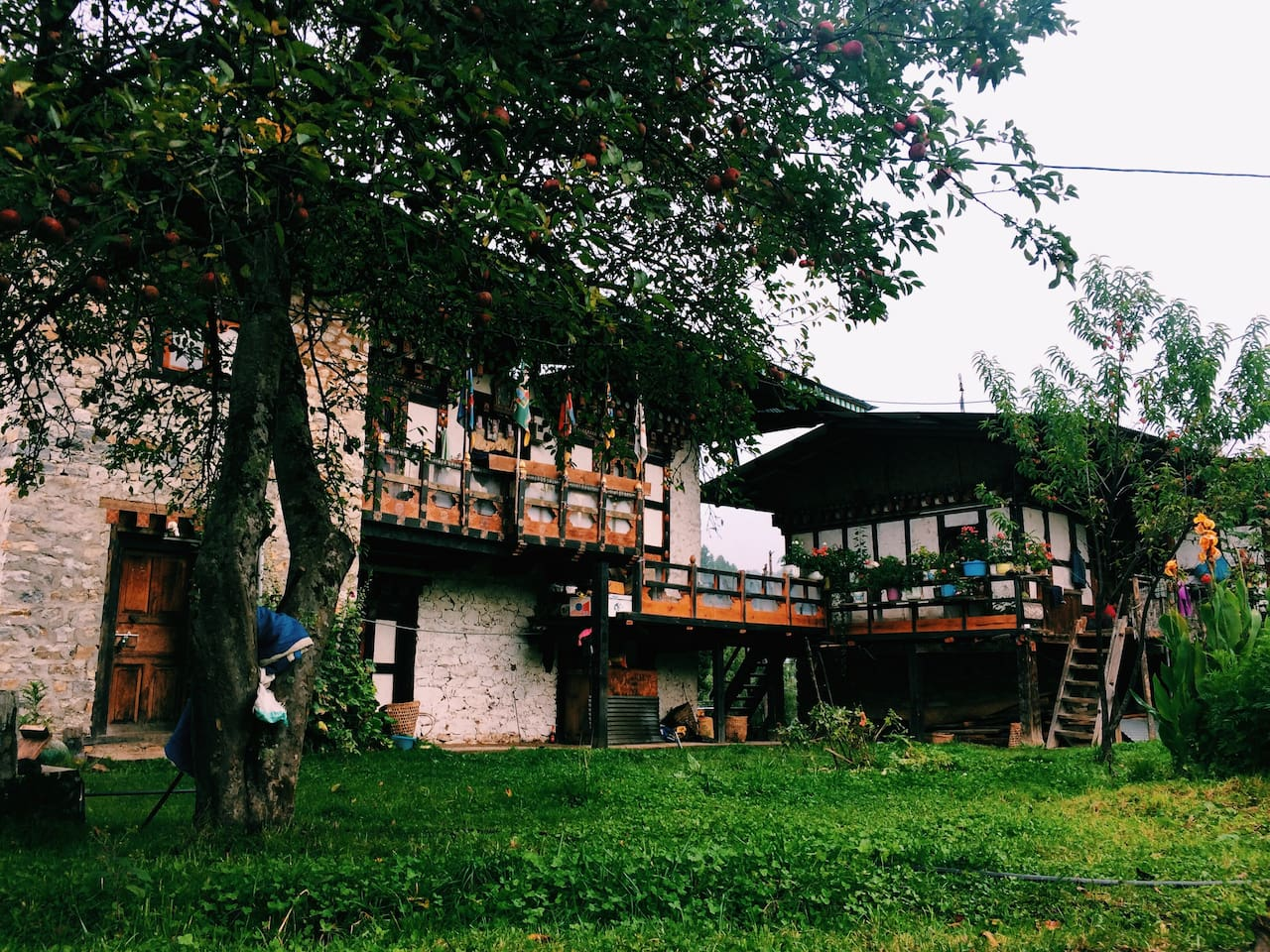 If you wish to stay and enjoy the serene and pristine environment, Visit Gumling Homesaty at Bumthang. You will personally get in touch and know the unique living styles of the particular ethnic society.