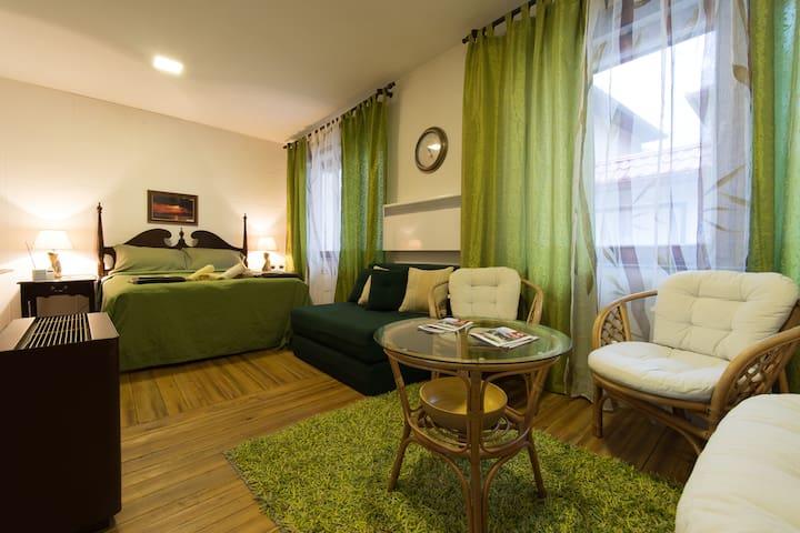 Vratnik Mahala Apartment