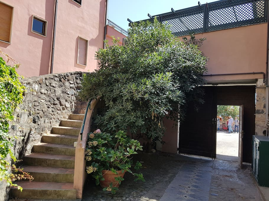 Stair Leading to Terrace and Entrance