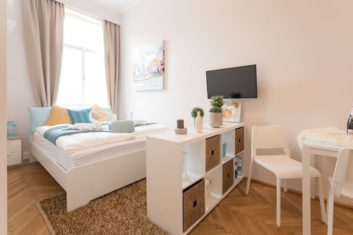 Stylish Room next to city center (7min by feet)