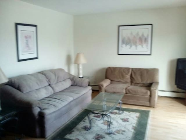 Downtown apartment 50 feet from LCC - Lansing - Appartement
