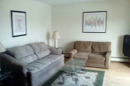 Downtown apartment 50 feet from LCC - Lansing - Apartment
