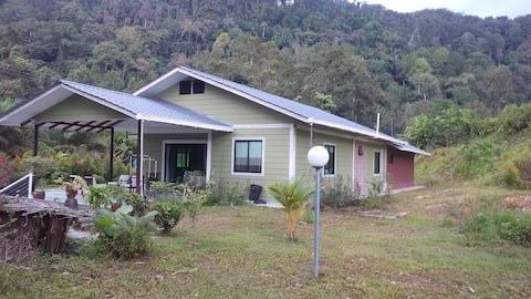 Borneo Rainforest Eco Stay