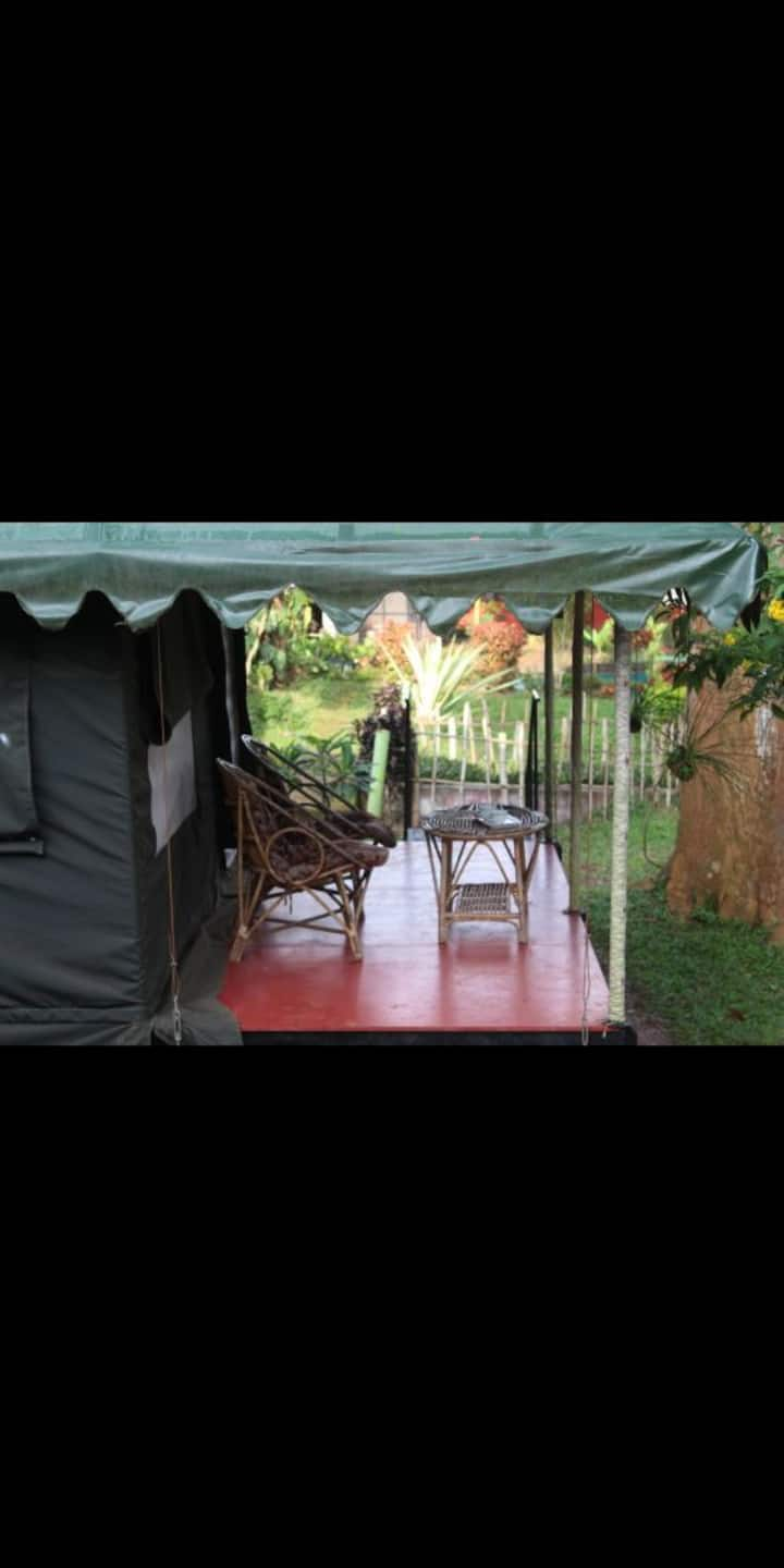 Experience the luxury camping amidst the nature