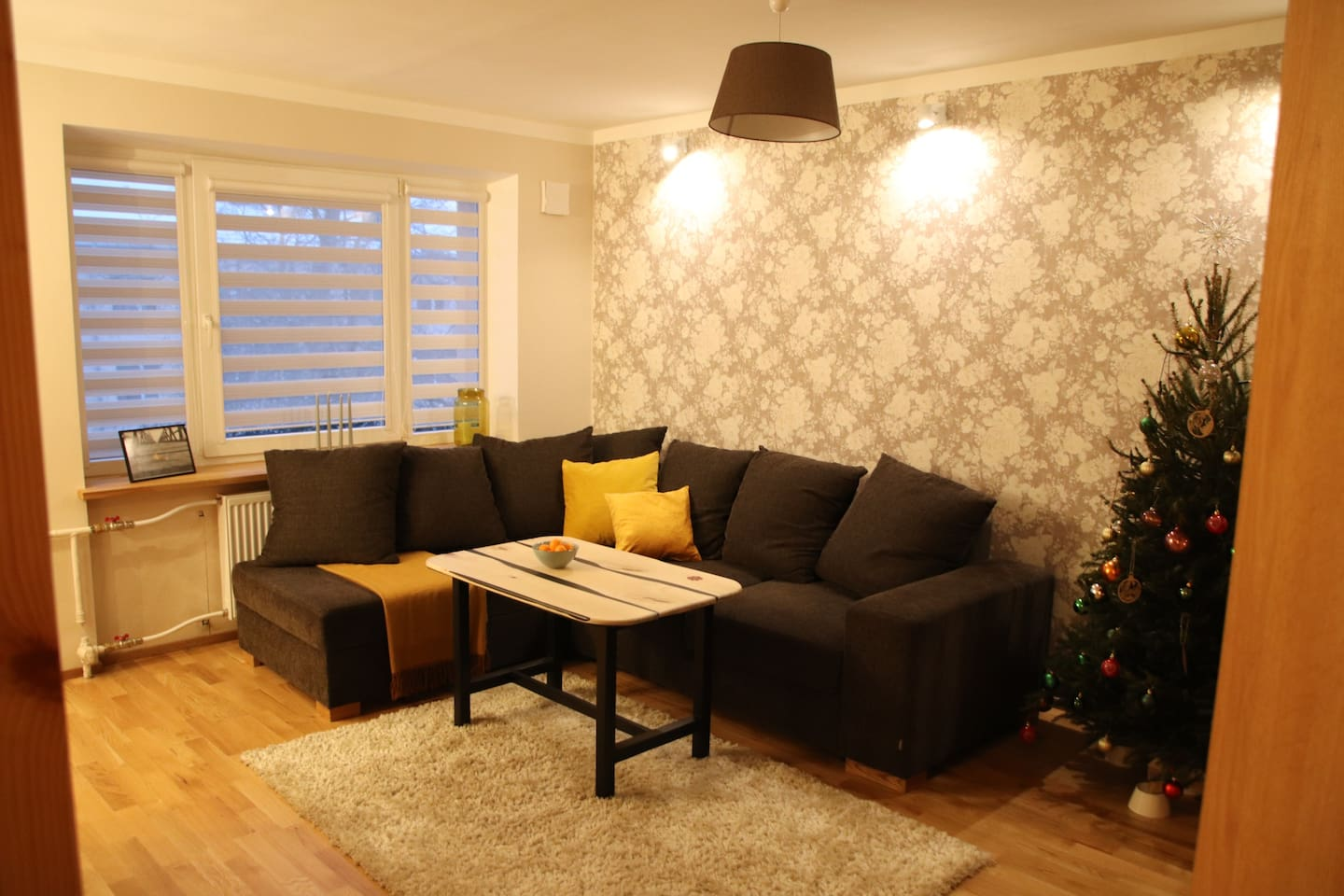 Livingroom (sofa opens up as double bed)