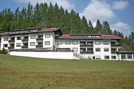 Caratteristico appartamento con sauna a Riezlern
