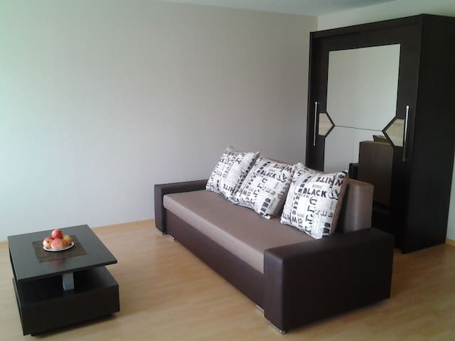 A cosy flat near Ski resort Zagarkalns - Cēsis - Apartamento