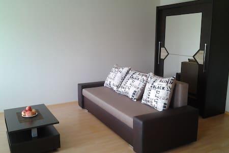 A cosy flat near Ski resort Zagarkalns - Cēsis - Lejlighed