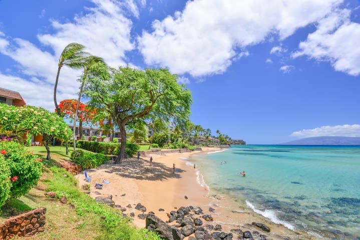Kuleana Beach! Steps from lanai is an almost private beach.