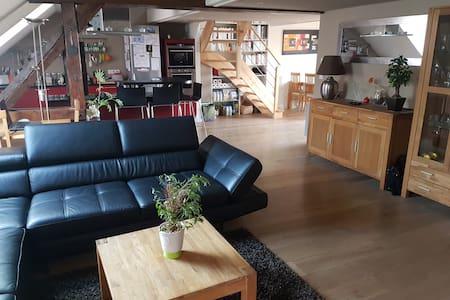 Adorable appartement avec cachet - Strasbourg - Huoneisto