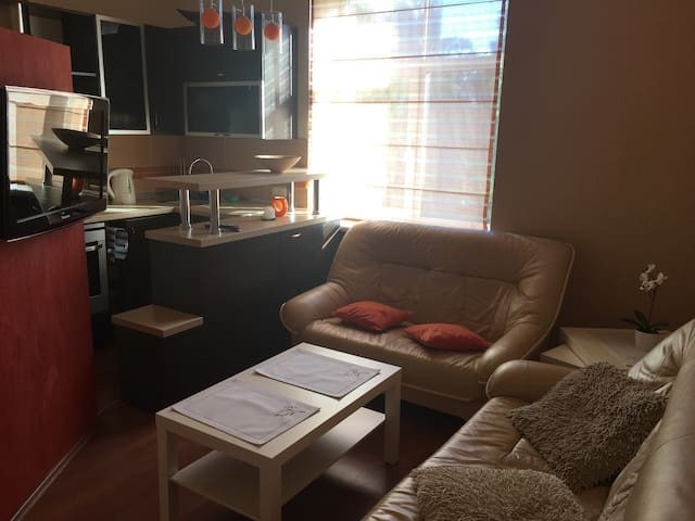 Nice stay in centre near beach, free parking - Liepāja - Apartemen