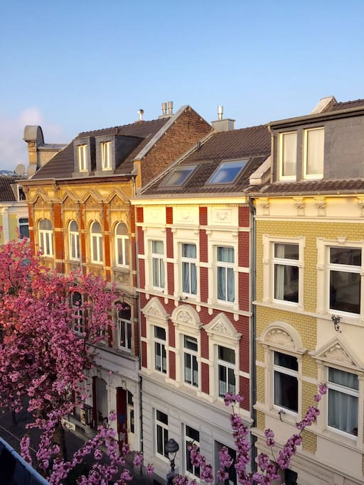 Looking out of the studio's window - calm street, nice Cafes and Restos around. Blick nach draußen, wunderschöne Umgebung