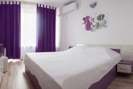 Prolet Guest House Purple Room