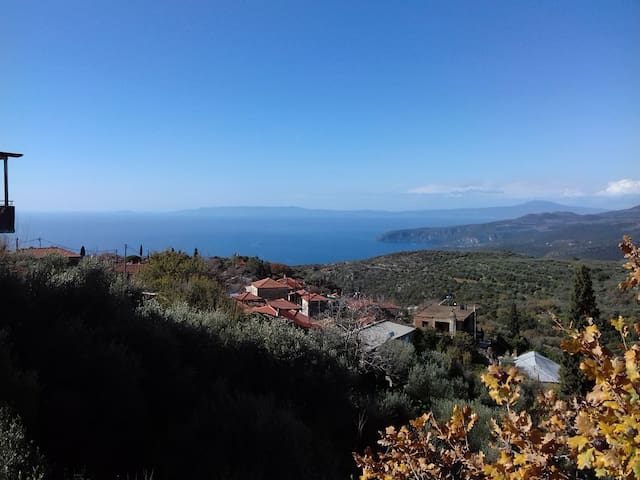 Dimitris home