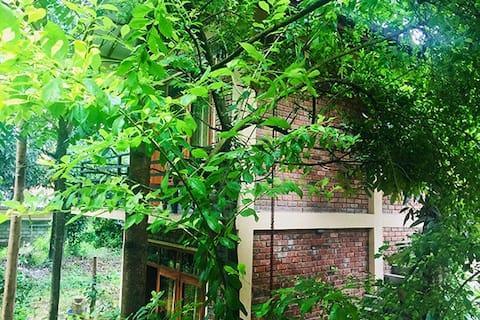 Veraima Kandy Rooms Available