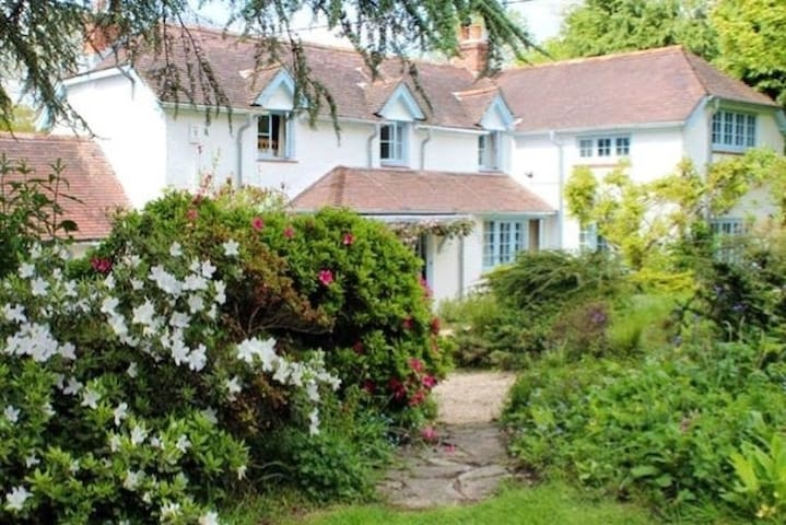 Homely cottage in beautiful gardens in New Forest