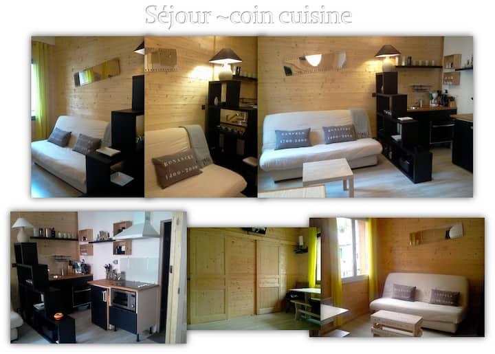 Appartement T2 Centre au bord de la rivière Ariège
