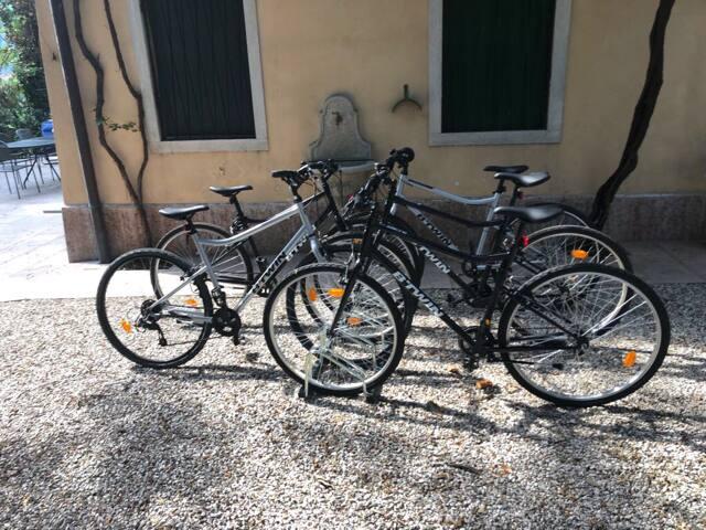 Bici disponibili per gli ospiti