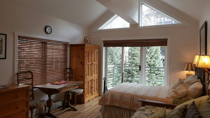 Studio in Telluride MV