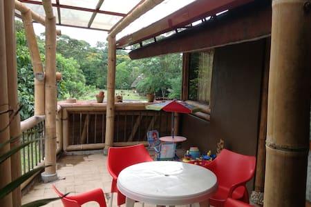 LINDO DEPARTAMENTO DE BAMBÚ EN LA AMAZONÍA