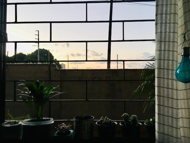 Casa das Plantas