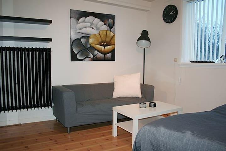 Private studio in the heart of Reykjavík - Reykavik - Daire
