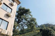 西湖龙坞近宋城民宿,二楼茶山阳台房,可包栋,烧烤,聚会,唱歌,喝茶
