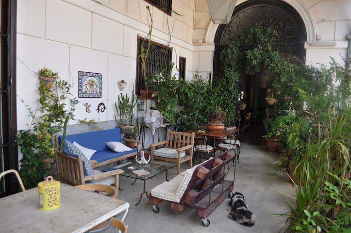 Stanza matrimoniale nel centro storico di Palermo