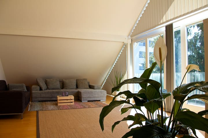 BASELWORLD! Cozy 90sqm attic apartment near Basel